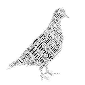 pigeon word art