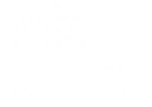 Horse Jumping and a Man Riding on the back and number 40