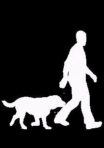 Dog Following a Man