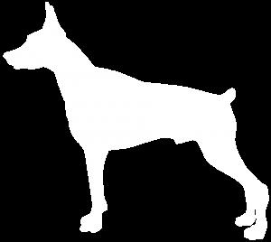 Rottweiler Gsw Dog