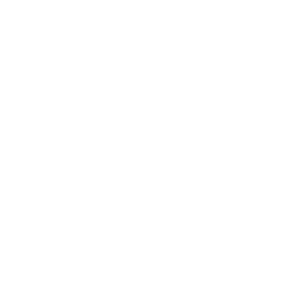 Tosa Inu Dog