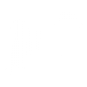 Pumi Dog
