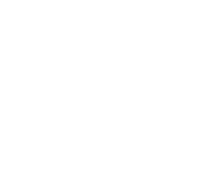 man in the bicycle